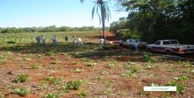 Técnicos y consejeros de la Cooperativa de Tabacaleros de Corrientes se capacitaron en Misiones